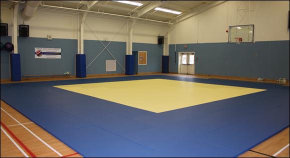 tatami judo 1