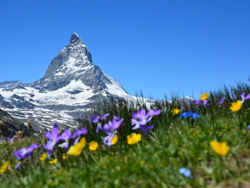 marre-de-la-chaleur-prenez-le-frais-a-la-montagne-pendant-vos-vacances
