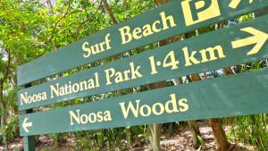 surf-AustraliTravellers-Autobarn-Noosa-beach